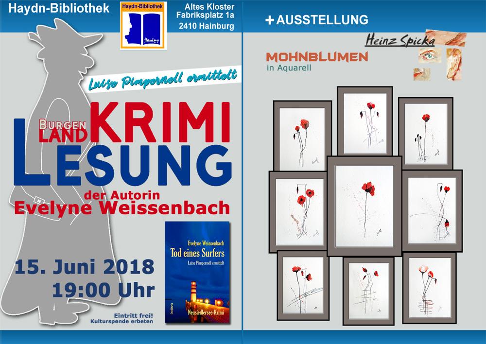 bibliothek hainburg