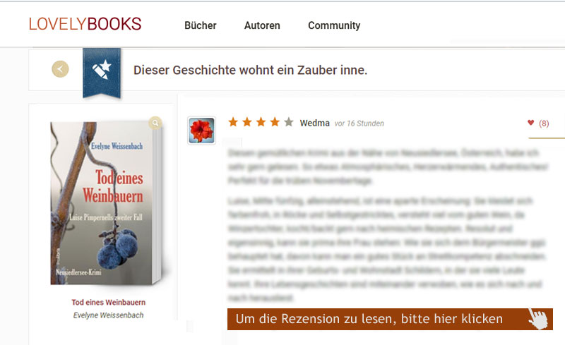 rezension wedma